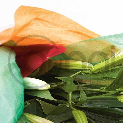 Tissue Paper - Custom Sizing & Printing